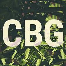 CBG/YCBG